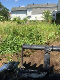 CLEARING OVERGROWN LOT